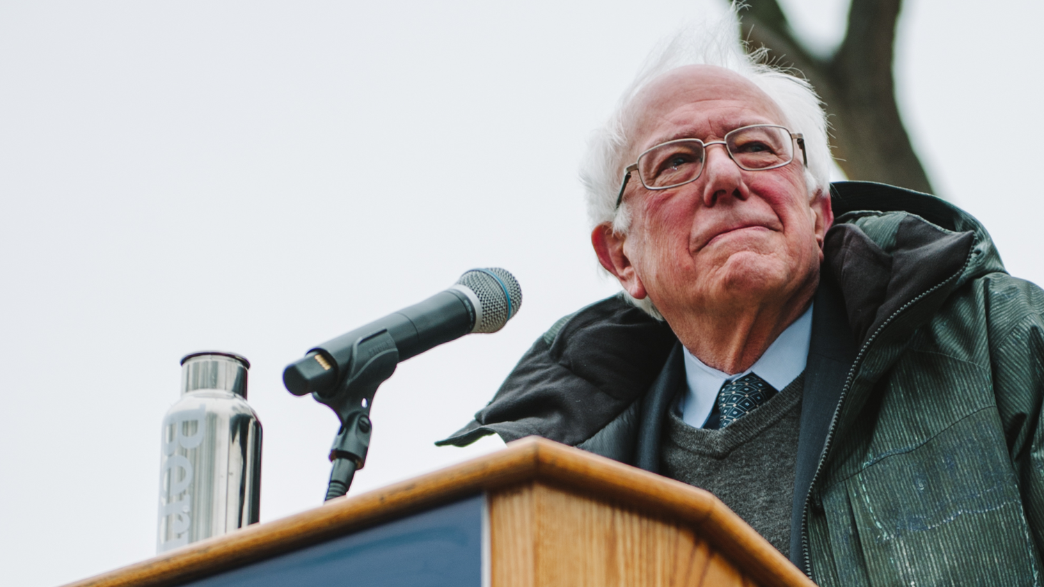 Sen. Bernie Sanders (I-VT) has embraced the Green New Deal