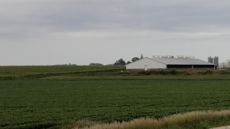 rural-america-1.png